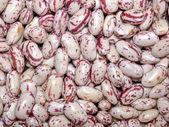 Beans salad — Stock Photo