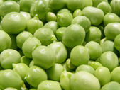 Peas picture — Stockfoto