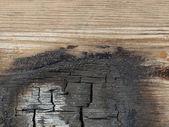 烧的木头 — 图库照片