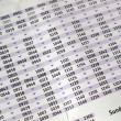 Timetable — Stock Photo #7431249