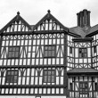 Stock Photo: Tudor building