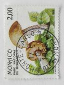 蒙特卡罗邮票 — 图库照片