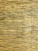Bamboo background — Foto de Stock