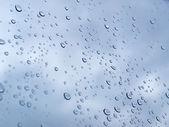 Regen druppels — Stockfoto