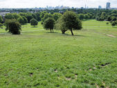 Primrose Hill London — Foto de Stock
