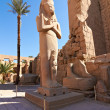 Pharaoh Ramses II enormous stone statue — Stock Photo