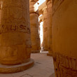 Great hypostyle hall with giant lotus columns - Стоковая фотография