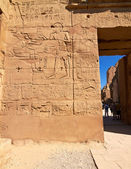 Part of a wall with hieroglyphs — Stock Photo