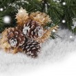 Christmas background — Stock Photo #7138403