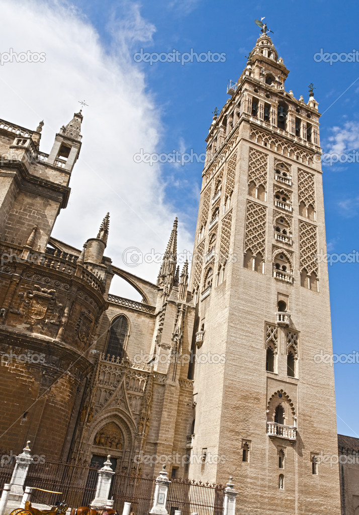 Detail from the outside of the Cathedral of Seville — Stock Photo #7215246