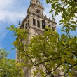 Cathedral of Seville — Stock Photo #7235556