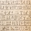 Egyptian hieroglyphics — Stockfoto #7870039
