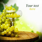 Glass with Bunch of ripe grapes — Stock Photo