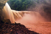 Parque de estado do cumberland falls — Foto Stock
