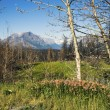 US Glacier National Park — Foto de stock #7230226