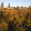 Stock Photo: Chicago from Northerly Island
