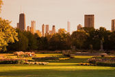 Lincoln Park during fall — Stock Photo