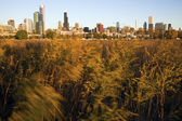 Chicago from Northerly Island — Stock Photo