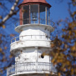 Stock Photo: Rawley Point Lighthouse
