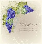 Vintage background with grape branch . — Vetor de Stock