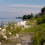 Shore of Lake Baikal — Stock Photo