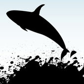 Killer Whale — Stock Vector