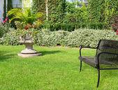 Güneşli bir gün bahçede — Stok fotoğraf