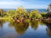 Tropisch paradijs resort — Stockfoto