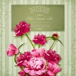 Vector holiday greetings with Peonies — Stockvectorbeeld