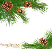 Festive vector background with green spruce and pine cones — Stock Vector