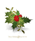 Vector christmas background with sprig of European holly (Ilex — Stock Vector