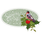 Vintage Christmas background with holly and bullfinch — Stock Vector