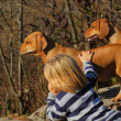 Kid with his dogs - Stock Photo