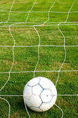 Ball in the net. — Foto Stock