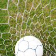 Ball in the net. - Stock Photo