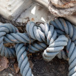 Stock Photo: Knotted rope.
