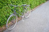 Bicicleta en el parque. — Foto de Stock