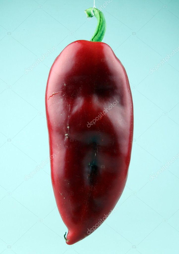 Red chilli peppers on white background — Stock Photo #6865067