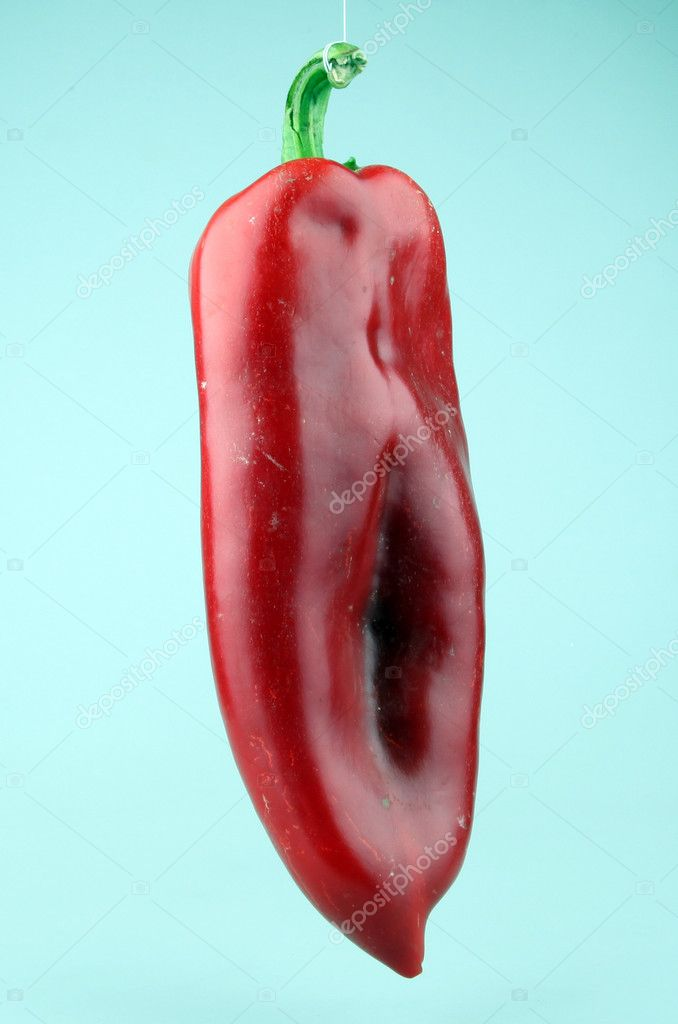 Red chilli peppers on white background — Stock Photo #6865172