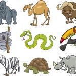 Cartoon animals set — Stock Vector