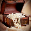 Treasure chest — Stock Photo #7947518