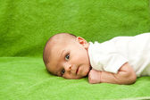 Newborn baby laying down — Stock Photo