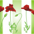 Summer poppies on green strips — Stock vektor #7800051