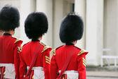 Grenadier Guard Inspection4 — Stock Photo