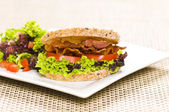 Close-up shoot of a Sandwich with rich Salad — Stock Photo