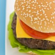 Classic Hamburger with cheese tomato and salad — Stok Fotoğraf #7277763