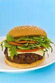 汉堡与奶酪和混合的番茄和蔬菜沙拉 — 图库照片