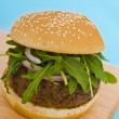 Hamburger with onion and salad — Stock Photo