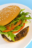 Hamburger with cheese and mixed tomato and salad — Stock Photo