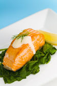 Salmon steak on spinach, decorated with lemon, dill and sauce — Stock Photo